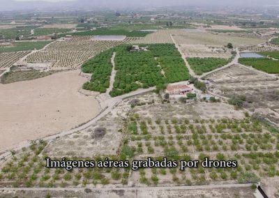 Video aéreo de campos